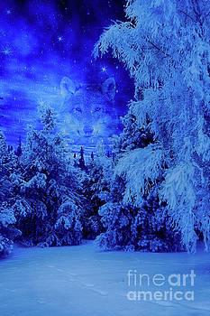 Wolf's night by Veikko Suikkanen