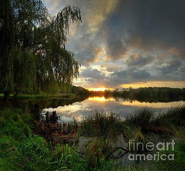 Yhun Suarez - Wollaton Lake
