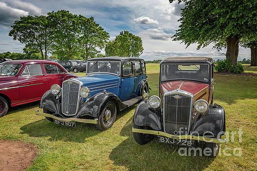 Wolseley Motors by Adrian Evans