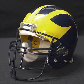Wolverine Helmet from the 1990s by Michigan Helmet