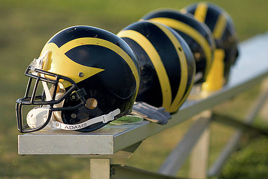 Wolverine Helmets on a Bench by Michigan Helmet