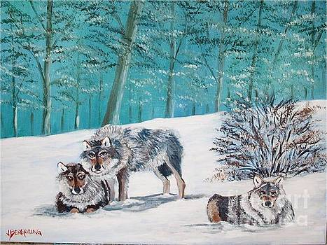 Wolves in the wild by Jean Pierre Bergoeing