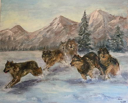 Wolves by Joan Wulff