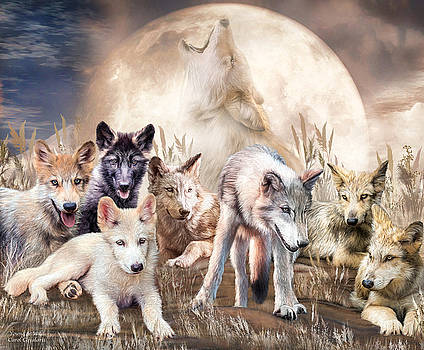 Wolves - Young And Wild by Carol Cavalaris