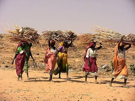 Woman in Darfur by Desenclos Patrick