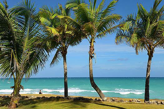 Reimar Gaertner - Woman meditating on shore at Varadero beach resort Cuba with Pal