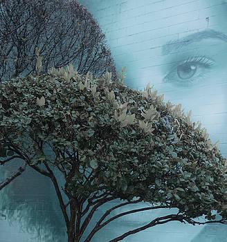 Woman of Mystery by Kelly McNamara