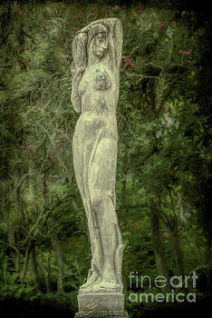 Kathleen K Parker - Woman of the Trees