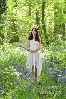 Woman Walking Through Bluebells by Amanda Elwell