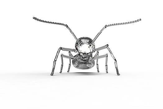Wonder Ant 2 by Creatives Think