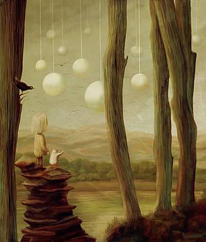 Wonder by Catherine Swenson
