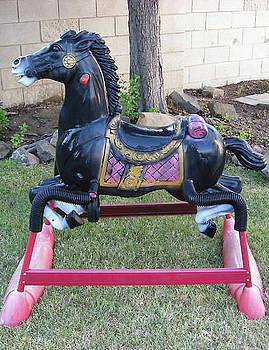 Wonder Horse Toy by Patrick RANKIN