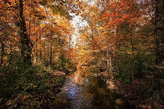Wonderful Autumn by Victoria Winningham