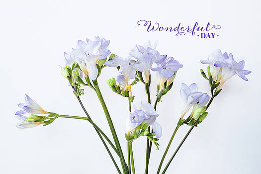 Wonderful Day by June Marie Sobrito