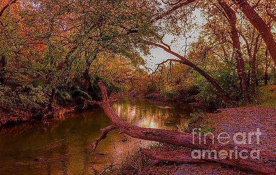 Wonderful Fall by Bob Marquis