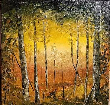 Wonderful Morning by John Reid
