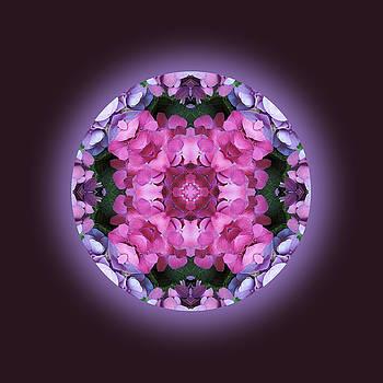 Wonderful Purples Mandala by Jorge Gomez