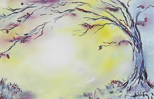 Joseph Palotas - Wonderland Bliss