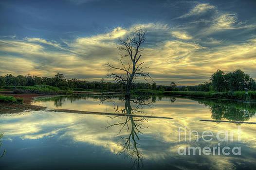 Wonga Wetlands by Philip Johnson