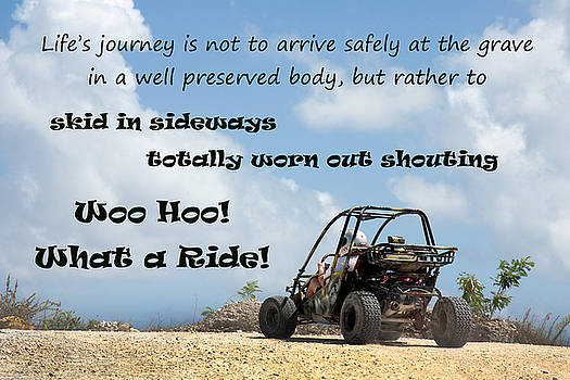 Woo Hoo What a Ride by Karen Lee Ensley