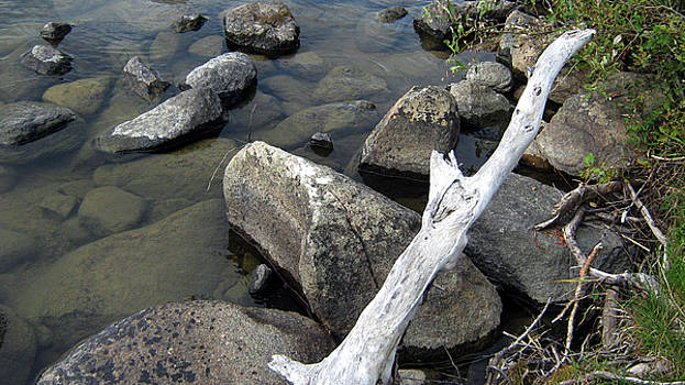 Wood and Rocks in Water by Emma Frost