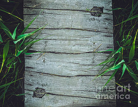Mythja Photography - Wood background with bamboo