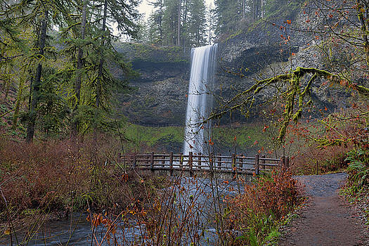 Wood Bridge on Hiking Trail at Silver Falls State Park by David Gn