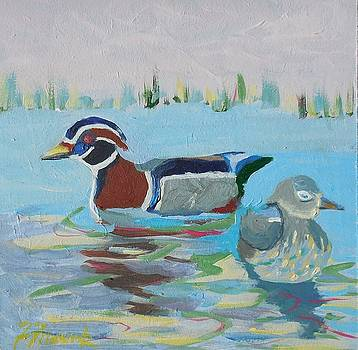 Wood Duck Pair by Francine Frank