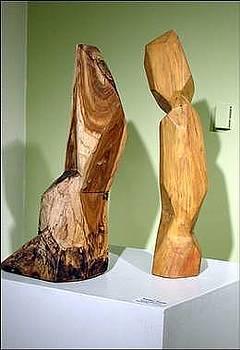Stephen Hawks - Wood Forms