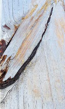 Wood Grain by Ami Brown