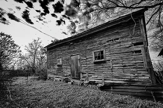 Wood of Grey by CJ Schmit