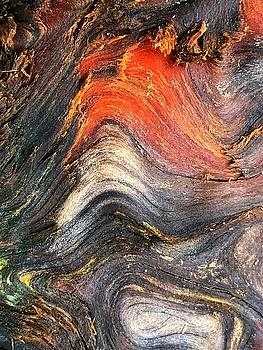 Wood Patterns by Bonnie Bruno