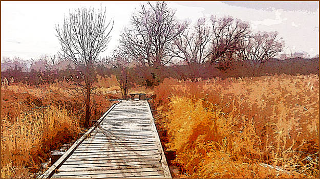 Wood Plank Path Nestled in Amber Orange Cattails by Gretchen Wrede