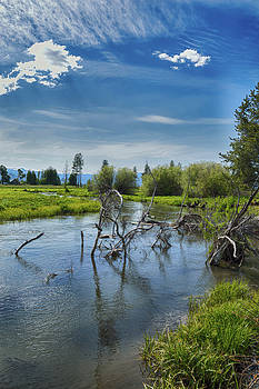 Wood River in Southern Oregon by David Crockett