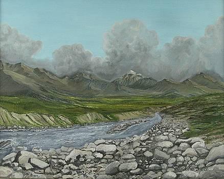 Wood River Storm by Amy Reisland-Speer