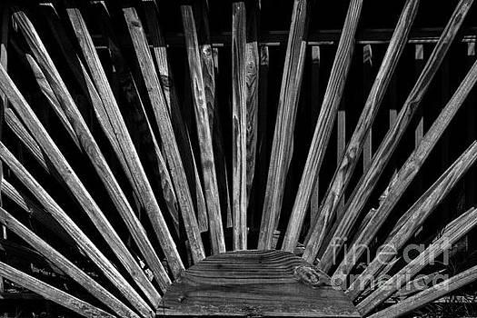 Wood Shadows by JW Hanley