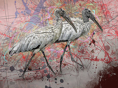 Wood Storks by Jim Ziemer