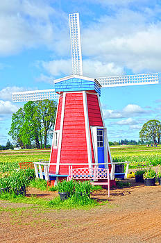 Woodburn Oregon - Holland Windmill by Image Takers Photography LLC - Laura Morgan