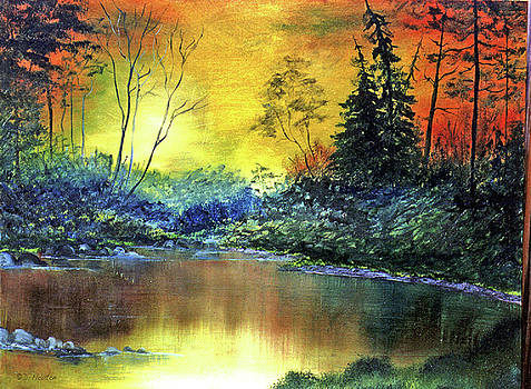 Dee Flouton - Wooded Serenity