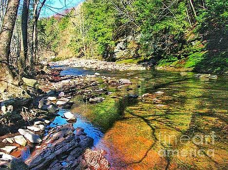 Wooded Stream Stockton New Jersey by John Castell