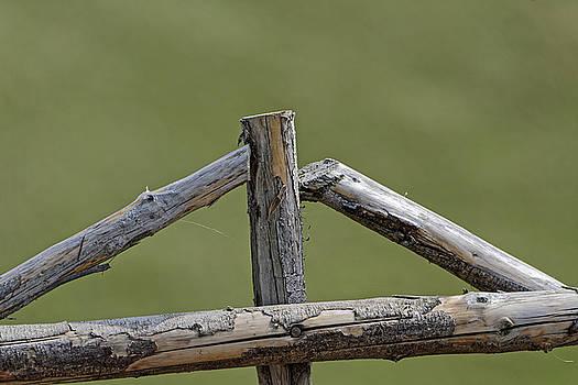 Wooden cross in a sheepfold fence by Adrian Bud