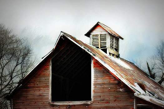 Wooden Cupola by Julie Hamilton