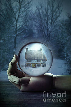 Wooden Hand Holding Crystal Ball by Amanda Elwell