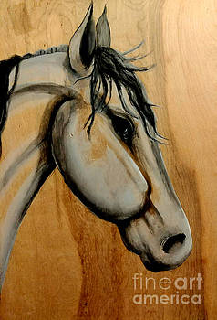 Wooden horse1 by Heather James