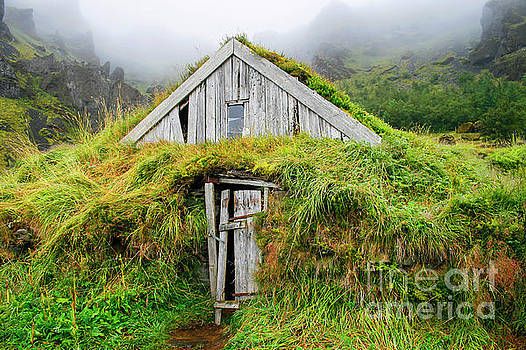 Patricia Hofmeester - Wooden house isolated with grass in Iceland