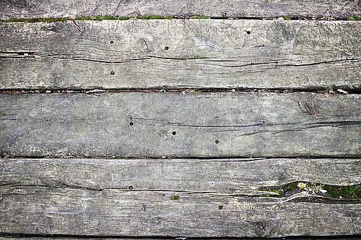 Wooden path by Vladimir Jovanovic
