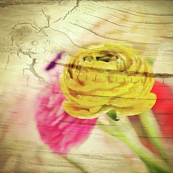 Wooden Ranunculus by AugenWerk Susann Serfezi