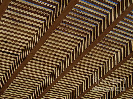 Mary Kobet - Wooden Sky