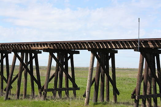 Wooden Trestle Train Track by JoAnn Tavani