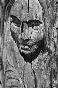 Wooden Woman by Daniel  Powell